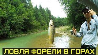На рыбалку в горы Карпаты ловить форель
