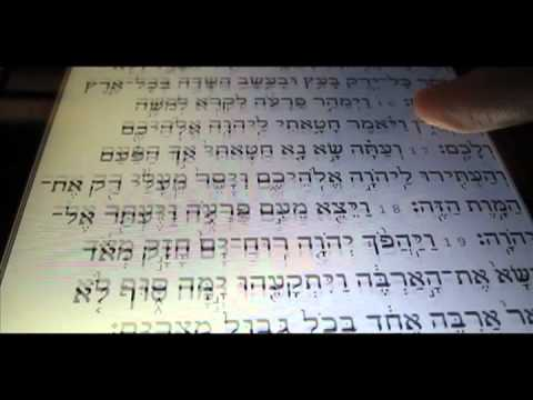 Video of Tanach Bible - Hebrew/English