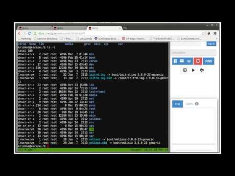 Nutty Shares Your Terminal Through Chrome