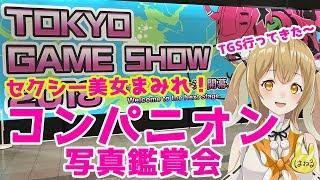TGS2018美女コンパニオンをひたすら撮影してきた!東京ゲームショウ2018ビジネスデイday2因幡はねる/あにまーれ