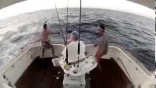 Смотреть онлайн Как поймали большую акулу на удочку