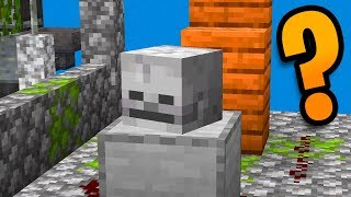 Minecraft: There's A Button Here And You Can't Spot It