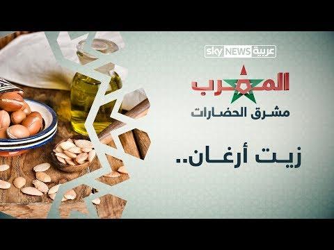 العرب اليوم - شاهد:ندرة شجرة أرغان تجعل ثمارها وزيتها من بين الأغنى في العالم