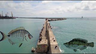 Рыбалка на черном море удочка