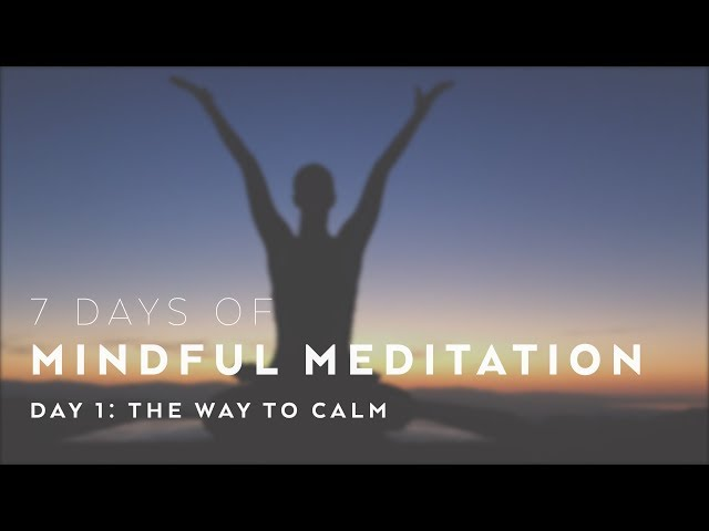 """The Way to Calm"" Meditation with Alissa Kepas – 7 Days of Mindful Meditation"