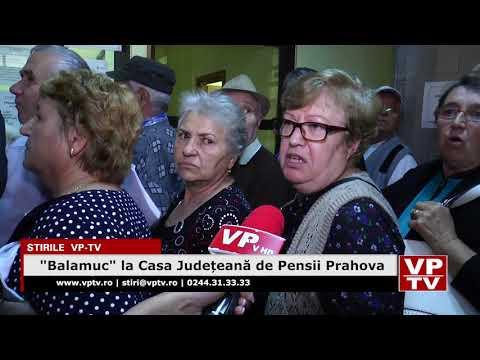 """""""Balamuc"""" la Casa Județeană de Pensii Prahova"""