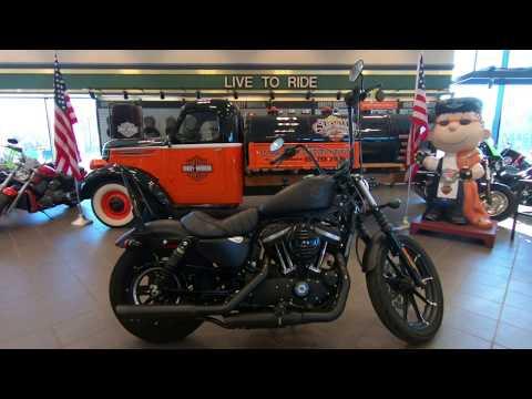 2020 Harley-Davidson CUSTOM Sportster Iron 883 XL883N