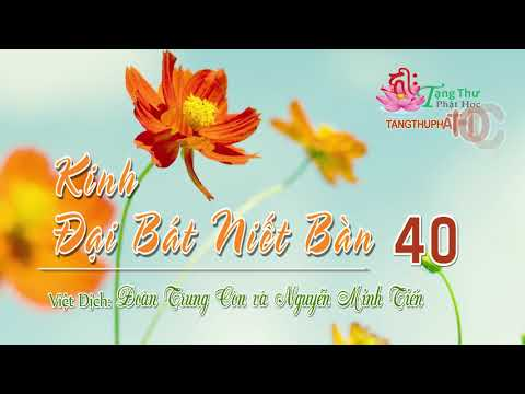 08. Phẩm Hạnh Thanh Tịnh Phần 1 -3