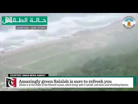 Video: Amazingly green Salalah is sure to refresh you