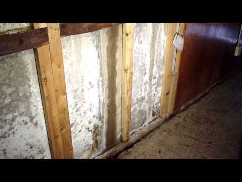 "In this episode of ""Ask the Expert"", a customer from Allendale, SC asks Rob Videon about the origins of a white powdery substance that is covering his basement walls. Could it be mold?