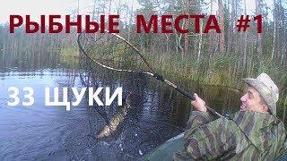 Места для отдыха и рыбалки в ленинградской области