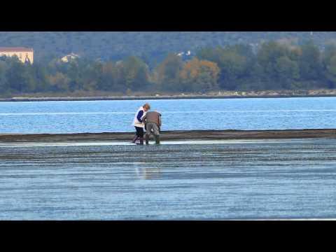 Il lago per pescare dalle mani