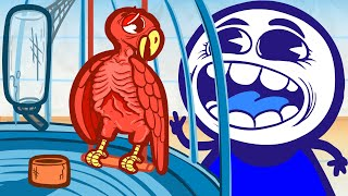 Pencilmate Gets POUNCED By a Parrot! | Animated Cartoons Characters | Animated Short Films