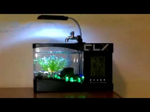 Mini USB desktop aquarium review