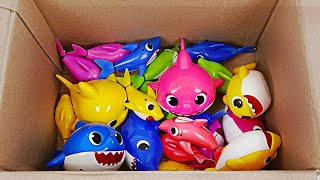 The shark family in the box! Match the colors and dive into the fish tank! | PinkyPopTOY