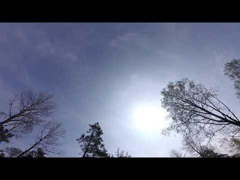 malsättra-hglrc-batman-220-20190518