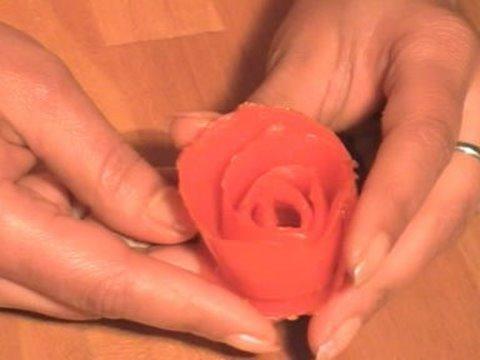 Une rose en tomate