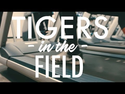 Tigers in the Field - Payton Nowlin