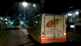 Ns 26 ngejar Bus paket Rosalia indah_Pantura