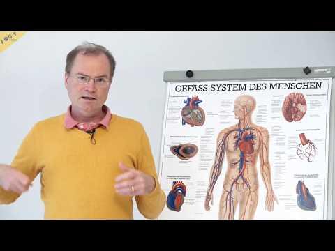 Herzrhythmus bei Hypertonie