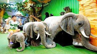 예준이의 공룡 박물관 곰인형 뮤지엄 어린이 놀이터 모래놀이 자동차 장난감 Video for Kids Museum Dinosaurs Toy