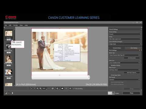 Professional Print and Layout Software Overview