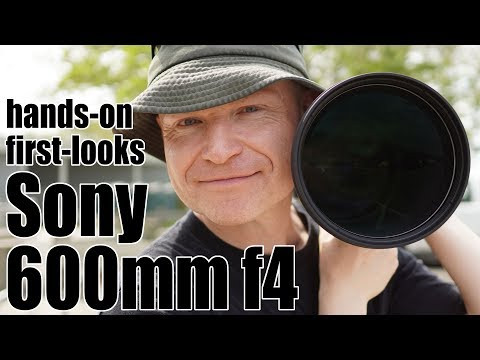 External Review Video EjM6LxMju9c for Sony FE 600mm F4 G Master OSS Lens (SEL600F40GM)