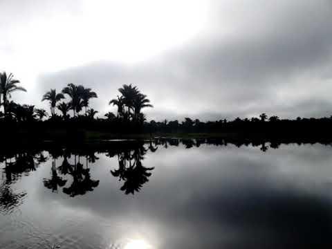 Águas belas e cristalinas do nosso rio tapuio aqui de alto alegre do Maranhão 03-04-2018