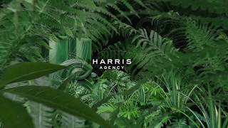 The Harris Agency - Video - 1