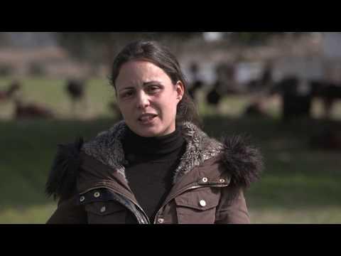 Fotograma del vídeo: Ruraltivity, la lanzadera de startups rurales