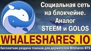 Блокчейн Whaleshares.io, аналог STEEM и GOLOS: бесплатная раздача токенов держателям Bitshares BTS