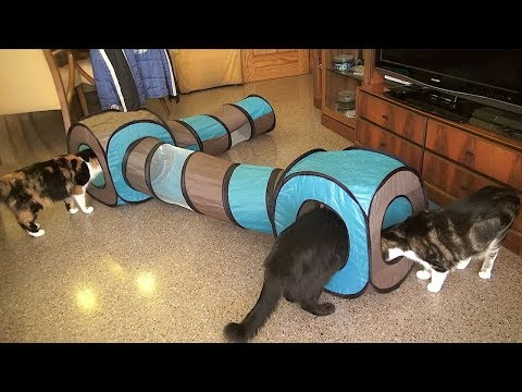 Tunel para gatos / Tunnel for cats CONNECT 2 en 1