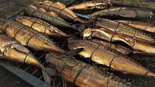 Рыбалка с ромарио агро 2019