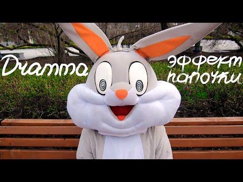 DRAMMA - Эффект папочки [MINI VIDEO ALBUM]