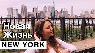 Общага в Нью Йорке, Универ, Экзамены, SAT, Работа в Нью Йорке   Marina Kruglova