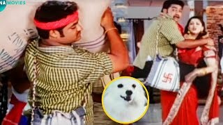 Jr NTR And Nagma Blockbuster Movie Interesting Scene | Telugu Movies | Mana Movies