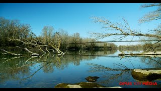 Bmpcc4K - Le Pont des Arméniers - Sorgues (Vaucluse) FRANCE