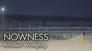 """Reindeer Wrangling"" by Eva Weber"