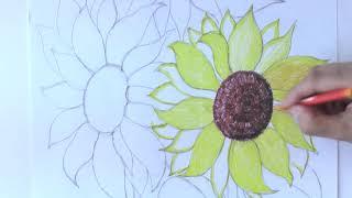 """Восковые мелки ERICH KRAUSE """"Artberry"""", 12 цветов, картонная упаковка с европодвесом, 34930"""