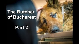 THE BUTCHER OF BUCHAREST PART 2 - What happened to Spirit?