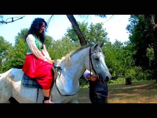 ALBANIAN FOLK MUSIC 2013