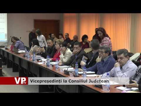 Vicepreședinți la Consiliul Județean