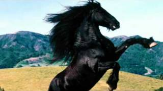 Vicente Fernandez....caballo Prieto Azabache