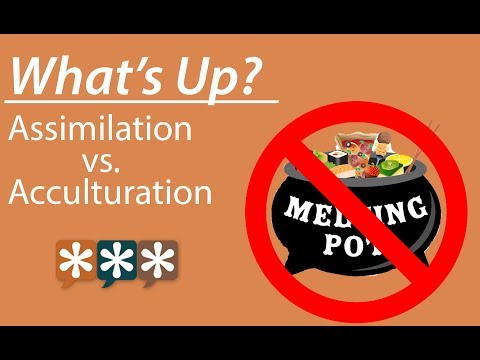 Asian american acculturation and assimilation