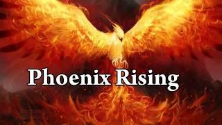 PHOENIX RISING - Guitar Playthrough! - Dan Johansen