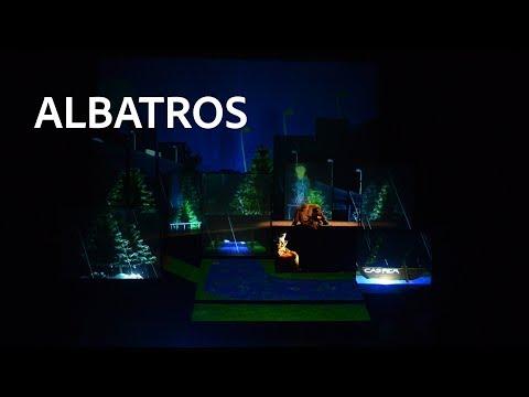 teaser albatros