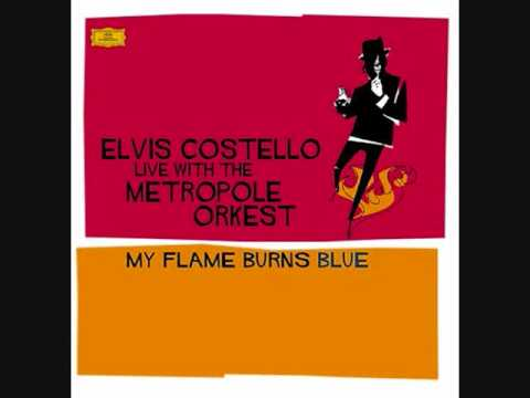 Upon A Veil Of Midnight Blue -Elvis Costello Live With The MetroPole Orkest (With Lyrics)