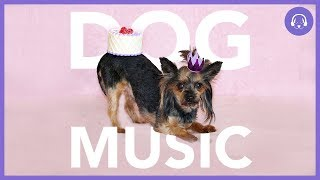 Dog Music: Calming Music To Help Your Dog (TESTED)