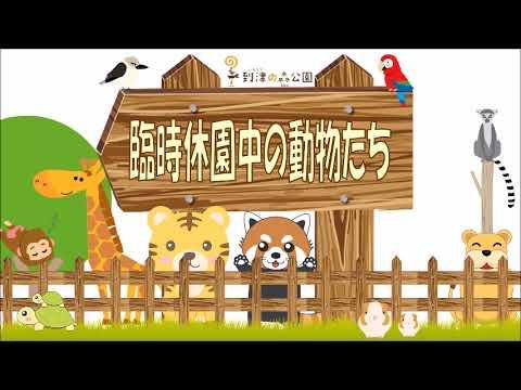 臨時休園中の動物たち★到津の森公園