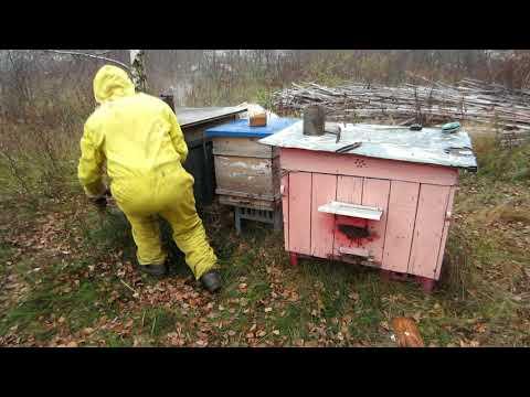 Пчеловодство.Как спасти пчёл от мышей.Заградительные летки своими руками.Зашита ульев.